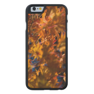 Japanese Maple Leaves Carved Maple iPhone 6 Slim Case