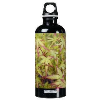 Japanese Maple Leaves Water Bottle