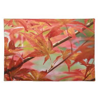 Japanese Maple Placemat