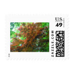 Japanese Maple Postage Stamp