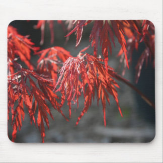 Japanese Maple Red Leaves Mouse Pad