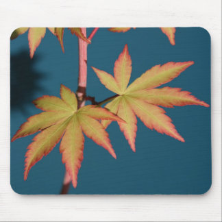 Japanese Maple Spring Leaves Mouse Pad