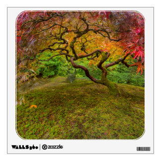 Japanese maple tree in autumn color wall decals