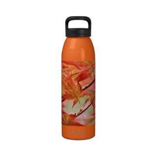 Japanese Maple Drinking Bottles