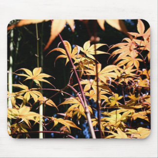 Japanese Maples (5) Mouse Pad