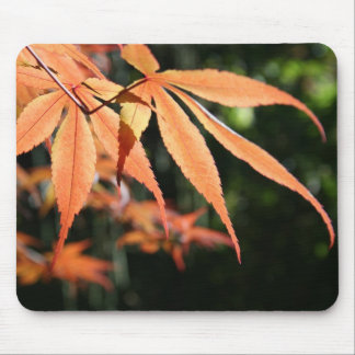 Japanese Maples (7) Mouse Pad