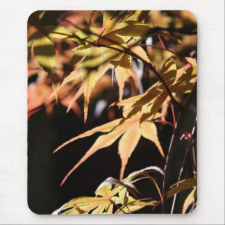 Japanese Maples (8) Mouse Pad