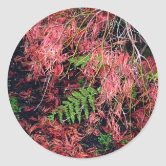 Japanese Maples Leaves carpet the soil Classic Round Sticker