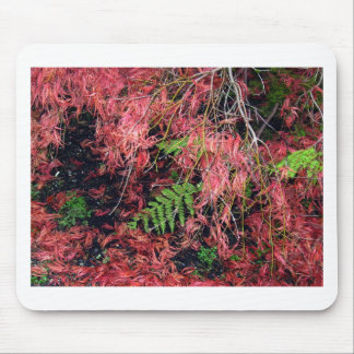 Japanese Maples Leaves carpet the soil Mouse Pad