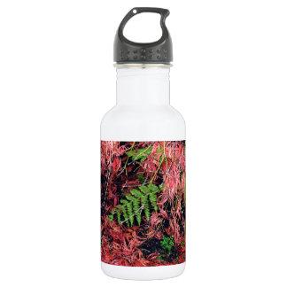 Japanese Maples Leaves carpet the soil Water Bottle