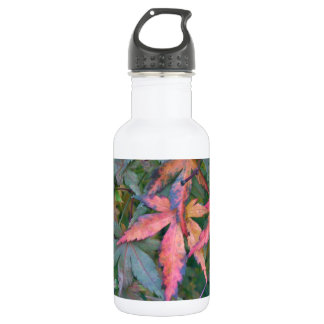 Japanese Maples Leaves in Fall - Photograph Stainless Steel Water Bottle