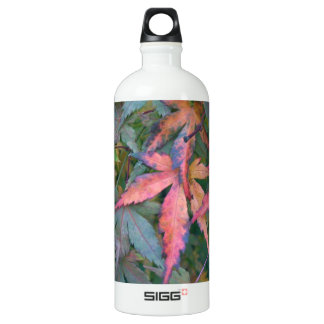 Japanese Maples Leaves in Fall - Photograph Water Bottle