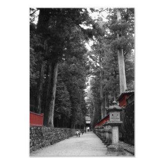 Japanese Monastery Photo