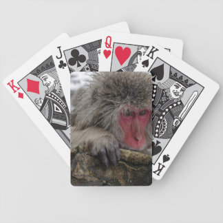 Japanese monkey relaxing in hot spring bicycle playing cards
