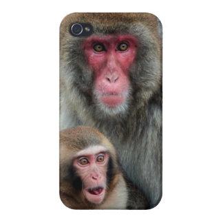Japanese Monkeys iPhone 4 Glossy Finish Case