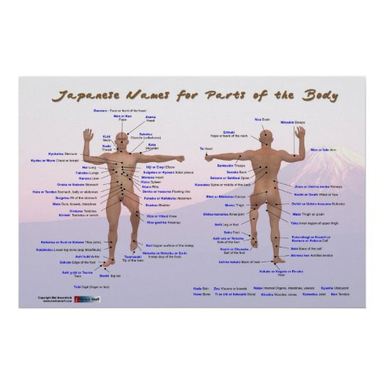 Japanese Names for Parts of the Body Poster