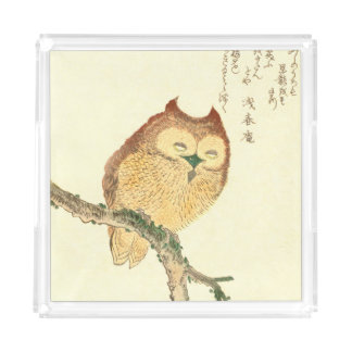 JAPANESE OWL ON A MAGNOLIA BRANCH Perfume Tray