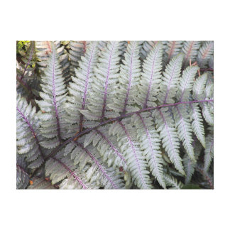 Japanese Painted Fern Floral Photo Canvas Print