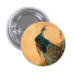 Japanese Peacock no.2 Pinback Buttons