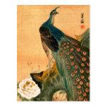 Japanese Peacock no.2 Postcard