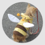 Japanese pet dog dressed as a bee on a sticker