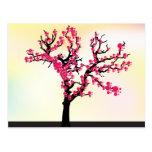 Japanese pink cherry blossom tree postcards