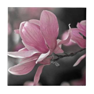 Japanese Pink Saucer Magnolia Ceramic Tiles