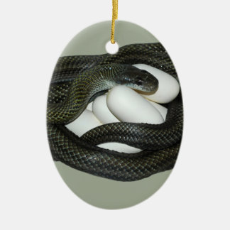 Japanese Rat Snake, beautifull and caring mother! Ceramic Ornament