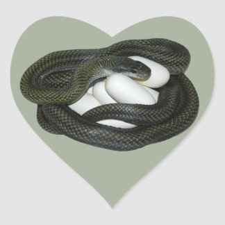 Japanese Rat Snake, beautifull and caring mother! Heart Sticker