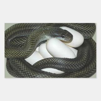 Japanese Rat Snake, beautifull and caring mother! Rectangular Sticker