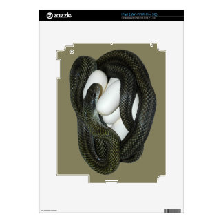 Japanese Rat Snake, beautifull and caring mother! Skin For The iPad 2