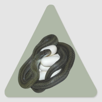 Japanese Rat Snake, beautifull and caring mother! Triangle Sticker
