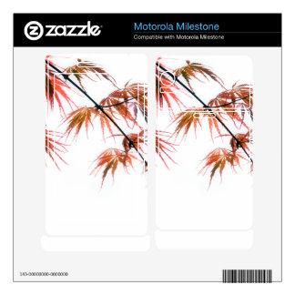 Japanese Red Maple Art Photography Motorola Milestone Skin