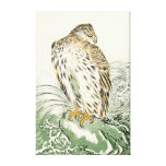 Japanese Sea Eagle - Osprey Gallery Wrapped Canvas