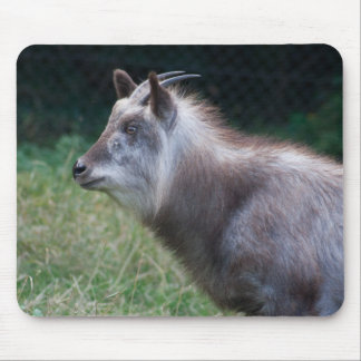 Japanese Serow Mouse Pad