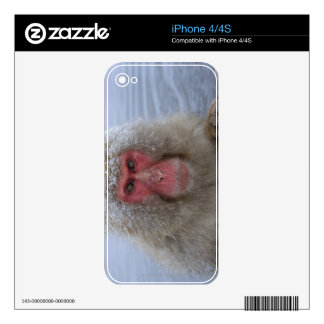 Japanese Snow Monkey in hotspring iPhone 4S Skin