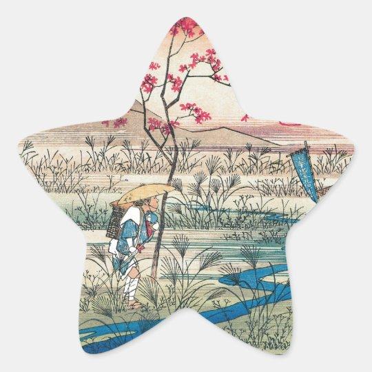 JAPANESE STAR STICKER