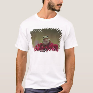 Japanese tree frog (Hyla japonica) on flowers, T-Shirt