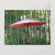 Japanese umbrella among the bamboo post card
