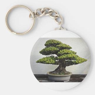 Japanese White Pine Bonsai Keychain