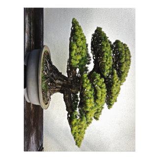 Japanese White Pine Bonsai Personalized Letterhead