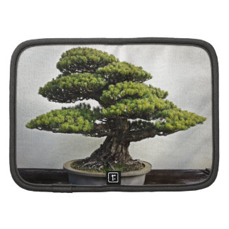 Japanese White Pine Bonsai Folio Planners