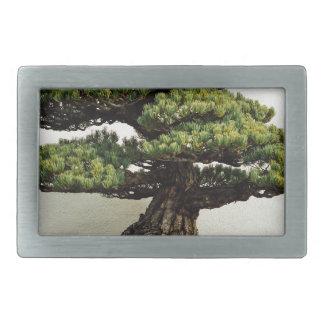 Japanese White Pine Bonsai Tree Rectangular Belt Buckle