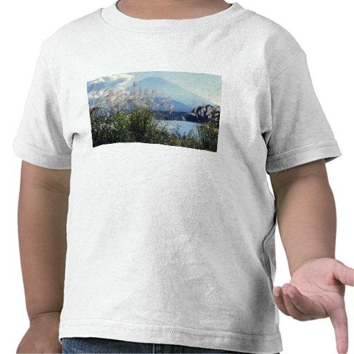 Japón, Honshu, Yamanashi Pref., Fuji-Hakone-Izu Camiseta
