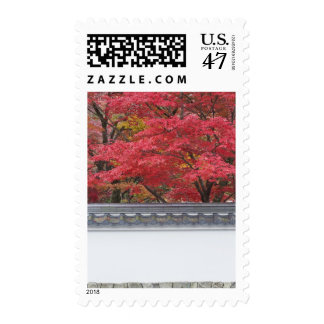 Japón, Kyoto, color del otoño en el templo de Sellos Postales