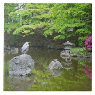 Japón, Kyoto. Garza en hojas verdes frescas Azulejo Cuadrado Grande