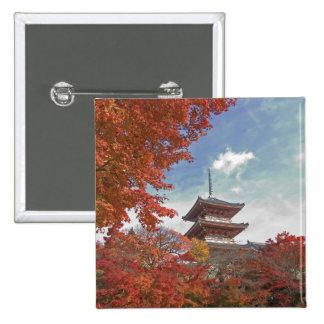 Japón, Kyoto, pagoda en color del otoño Pins