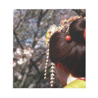 Japón, Kyoto. Primer de la vista posterior del gei Bloc