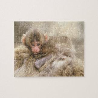 Japón, Nagano, Jigokudani, bebé del mono de la nie Puzzle Con Fotos
