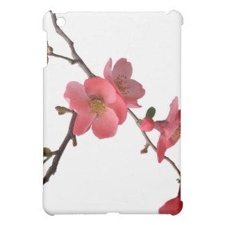 Japonica Blossoms  iPad Mini Case